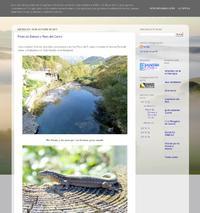 http://espinosodelreyavesynaturaleza.blogspot.com.es/