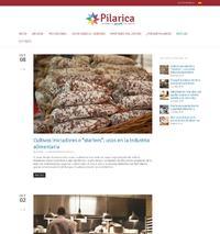 http://www.pilarica.es/noticias/