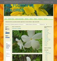 http://milfloresdecolores.blogspot.com/