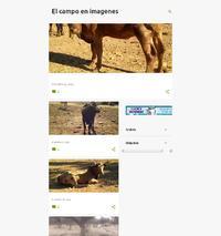 https://campoenimagenes.blogspot.com.es/