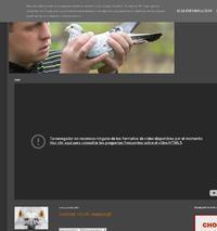 http://www.nieripigeons.blogspot.com