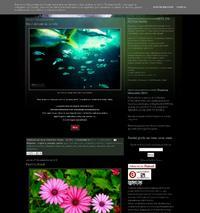 http://fotoalavista.blogspot.com.es