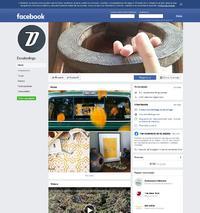 https://www.facebook.com/pages/Decofeelings/180125891985?fref=ts